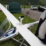 Ash26 33percent 6m Wingspan