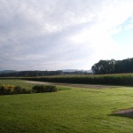 Cham Field